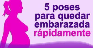 embarazo - 0 40 390x200