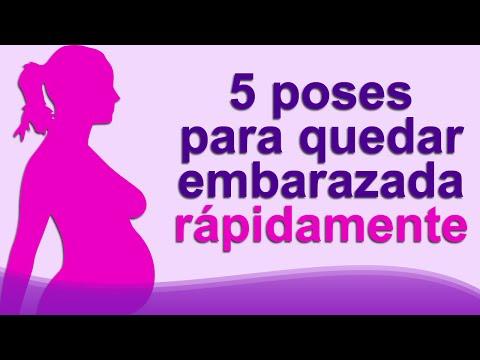 embarazo - 0 40